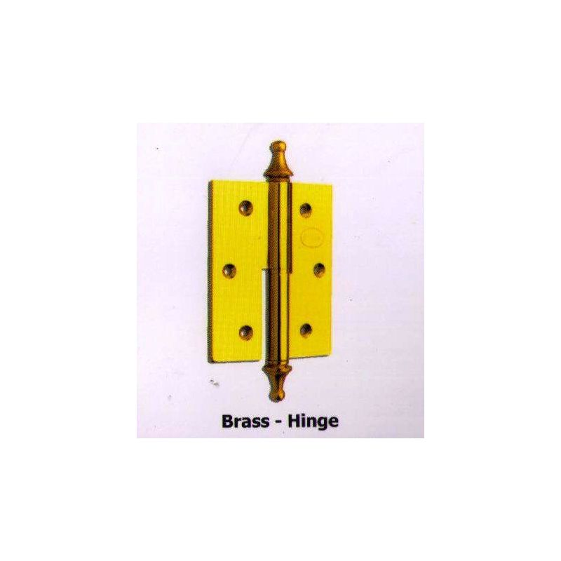 Small Hinges With Large Accessory