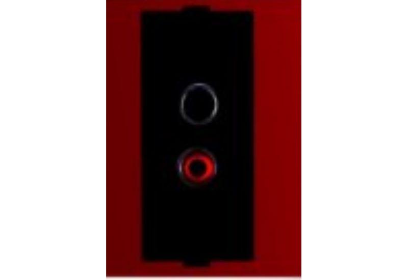 Motor+A/V Socket