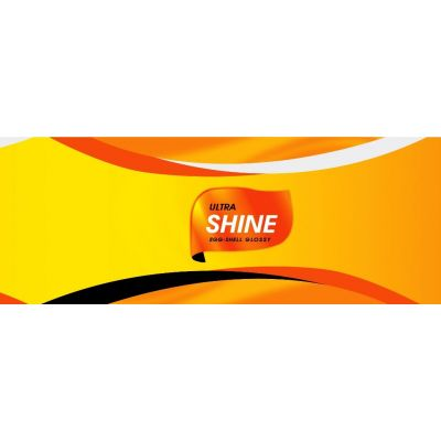 Ultra Shine (Egg-Shell Gloss Plastic)