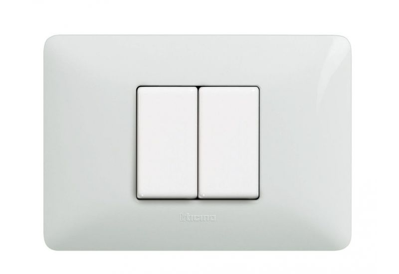 Whites Cover Plates Two Modules