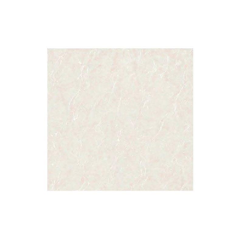 Beroia Polished Porcelain EB-6164