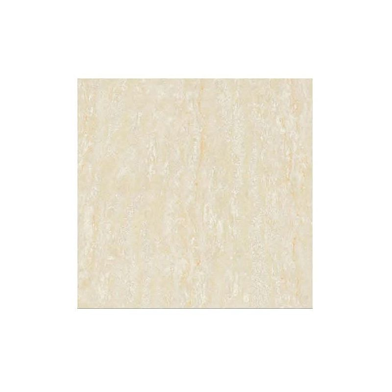 Beroia Polished Porcelain EB-6183
