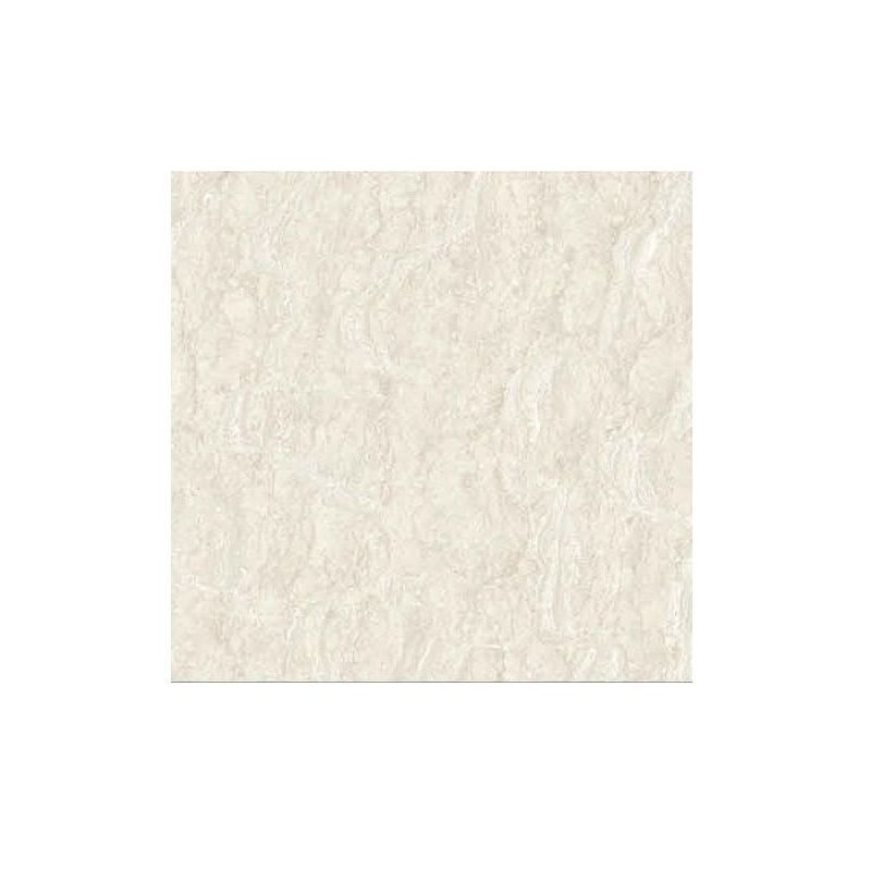 Beroia Polished Porcelain EB-6251