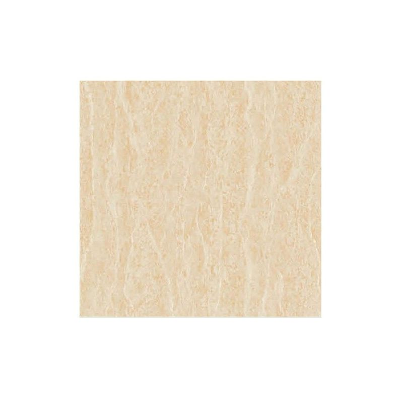 Beroia Polished Porcelain EB-6263