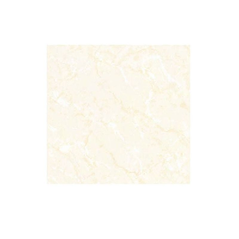 Beroia Soluble Salt Porcelain EB-6004