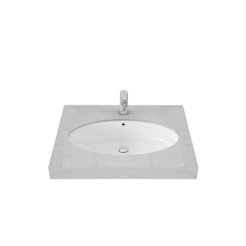 Under counter Lavatory(LW549J TSP0225W)